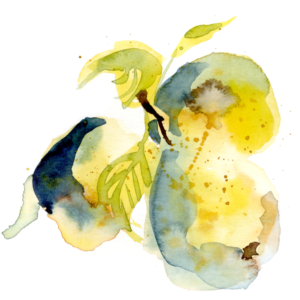 CLarsson_Pears